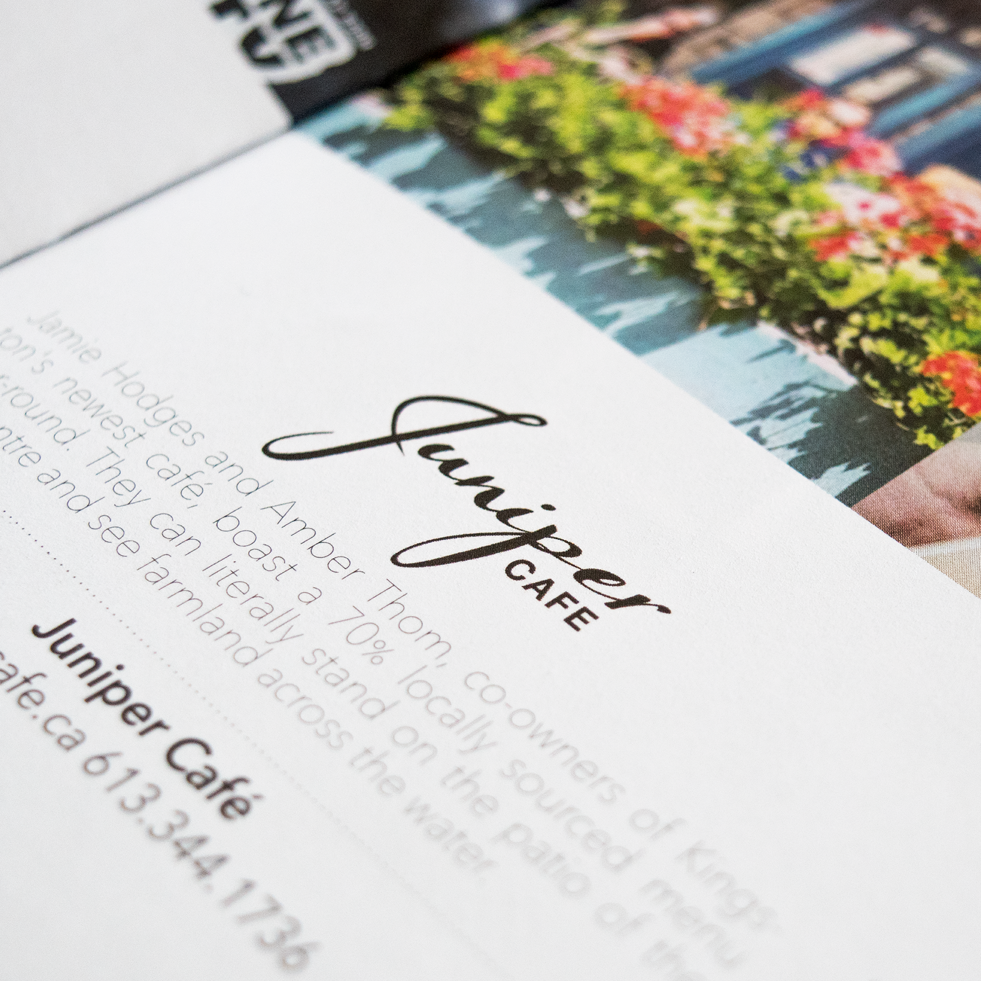 Juniper Cafe Branding, Logo Design, Website Design, & Photography